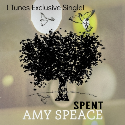 """Buy the single that you may have heard on NPR's """"Marketplace"""" or read about in The New York Times! Written with Neilson Hubbard and recorded at Mr. Lemon's Studio in East Nashville."""