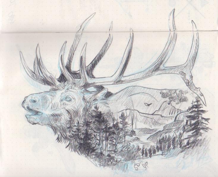drawing 19.jpeg