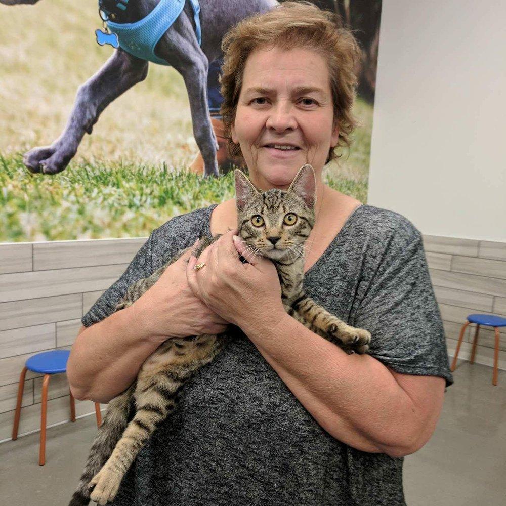 LUIGI - Adopted April 2017