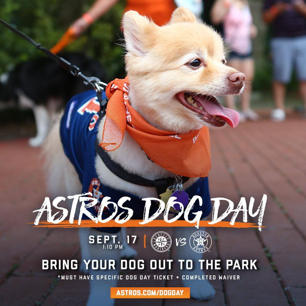 Astros Dog Day.jpg