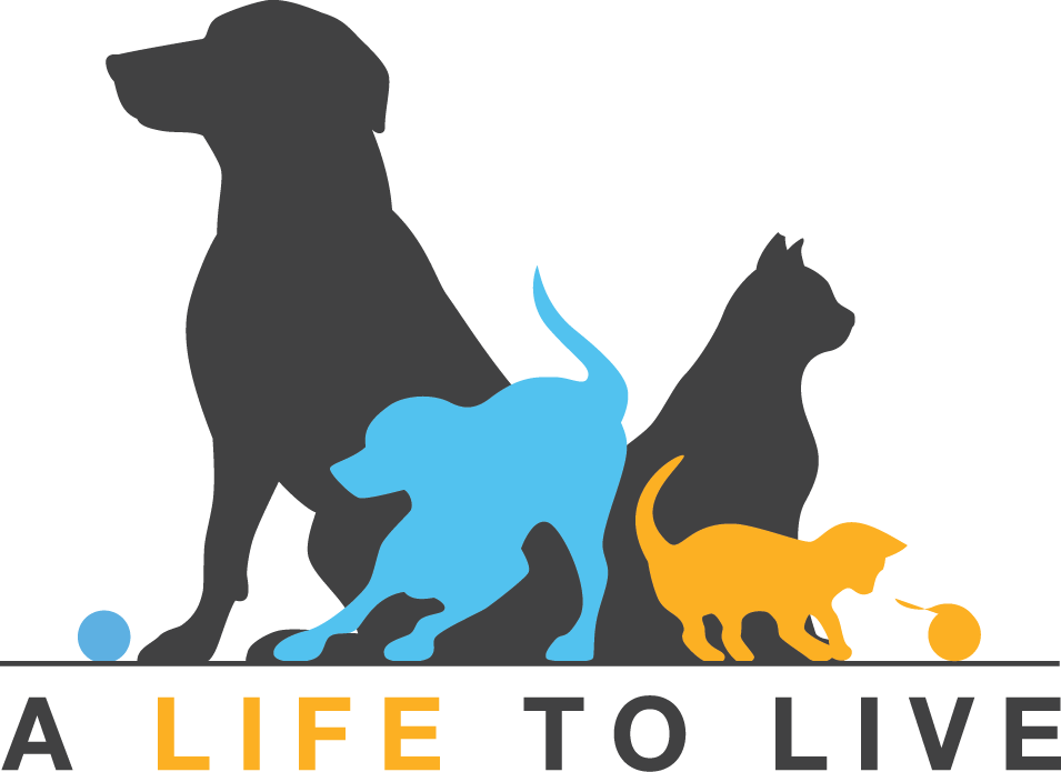 A Life to Live - Logo - Gray.png