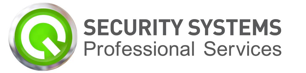 q-professional-services