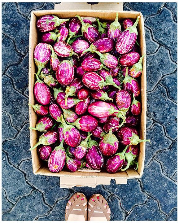 maha-munaf-abudhabi-eggplants-b.jpg