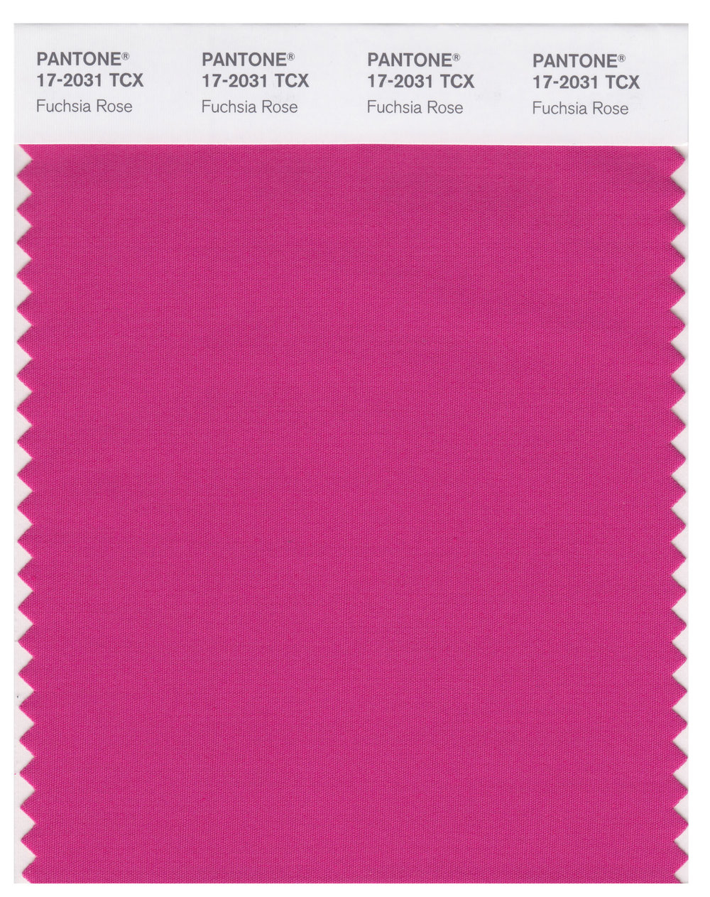 Pantone Smart 17-2031 TCX Color Swatch | Fuchsia Rose