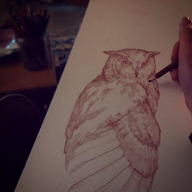 Nocturnal being depicting fellow nocturnal being #pencilonpaper #eagleowl #owls #nightowl #draw #montanaartist