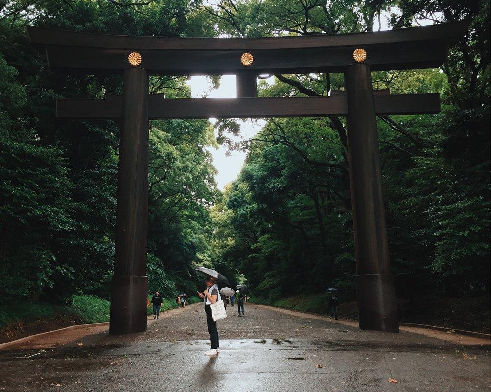 meiji-jingu-torii.jpg
