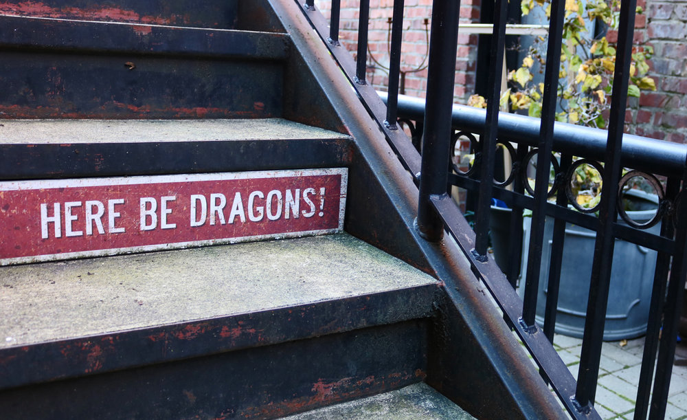 Careful not to disturb the dragons - Photo by Katrina Afonso