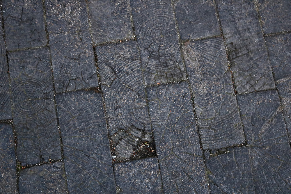 Old growth Douglas Fir pavers in Waddingon Alley - Photo by Katrina Afonso