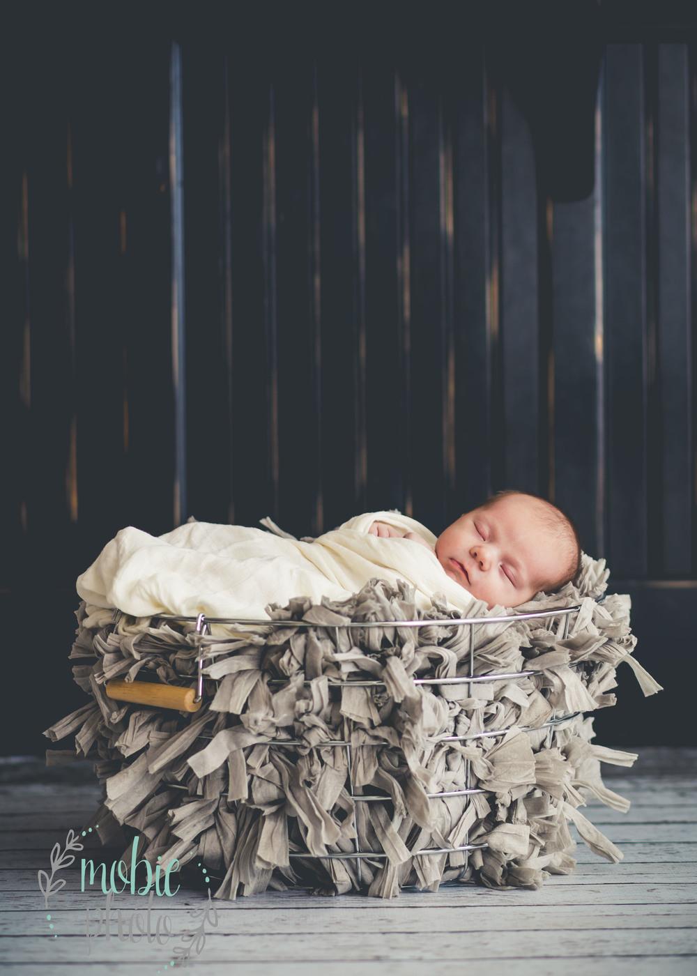 Lehi, Utah Newborn Photographer - MobiePhoto