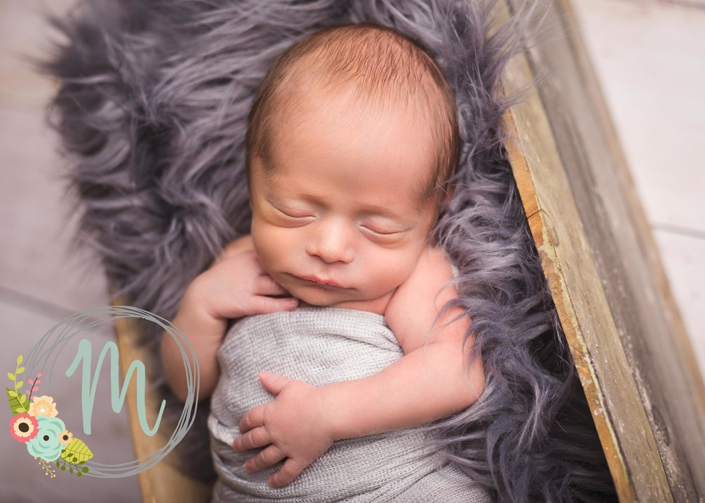 Utah Newborn Photographer - Twin Session - Mobie Photo Utah Newborn Photography