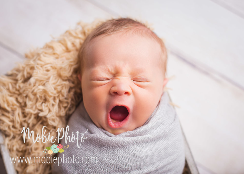 Newborn Photo Shoot - 11 days Old - Mobie Photo - Lehi, Utah
