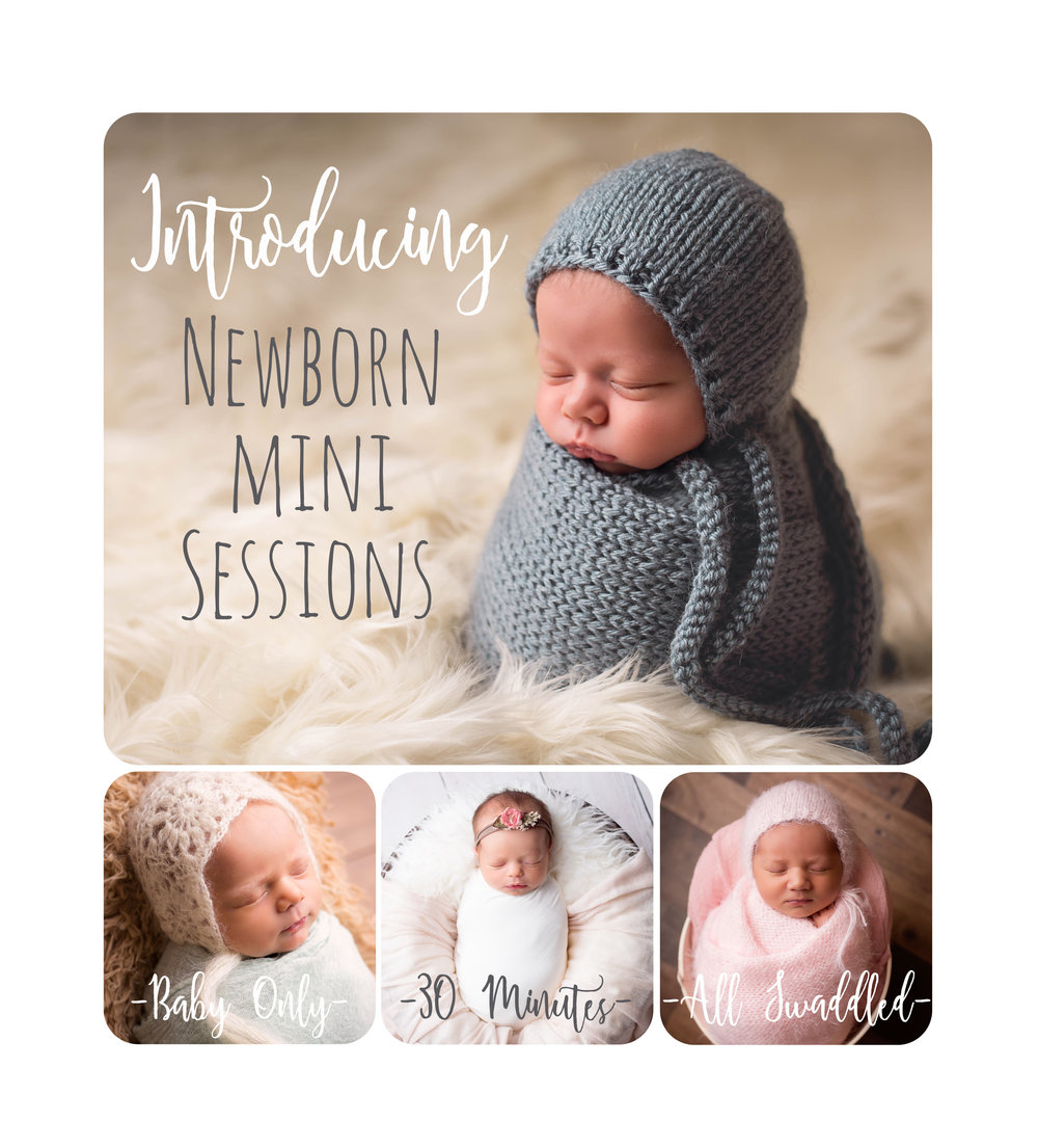 newborn mini sessions utah