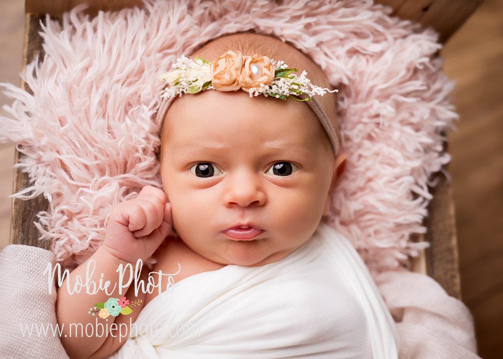 Newborn Girl Photo Session - Mobie Photo - Utah Newborn Photography
