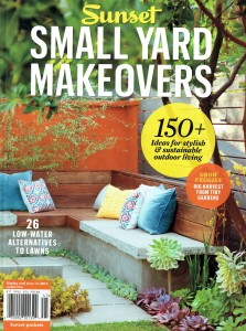 Sunset Small garden makeovers with GG.jpg