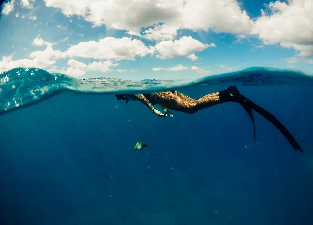 Underwater copy 1.jpg