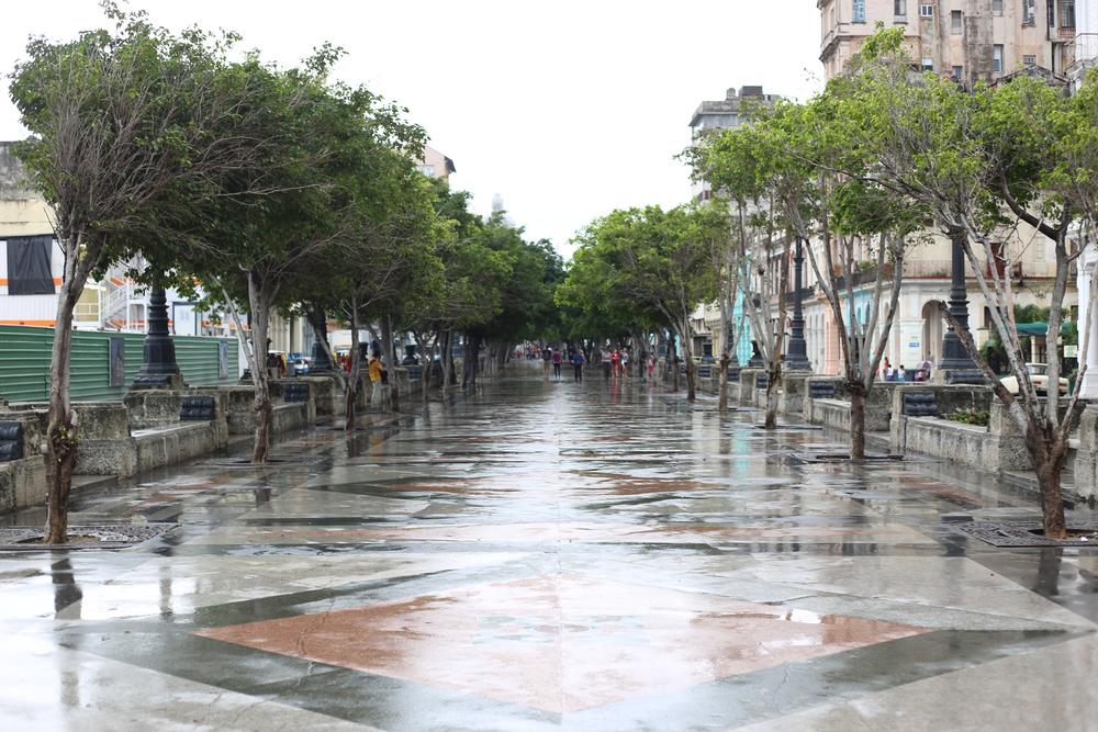 Havana (62 of 78).jpg