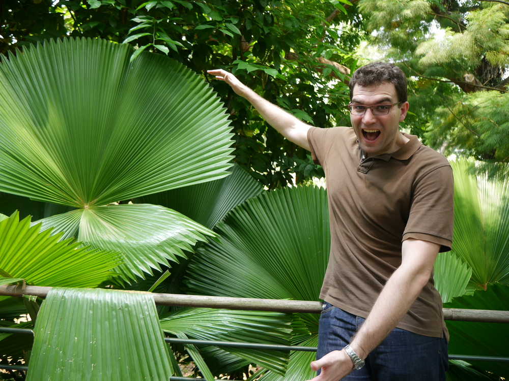 Me, under considerable duress, highlighting the size of these palm fronds.