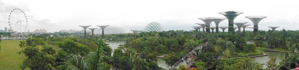 From left to right: the Singapore Flyer (giant Ferris wheel), the Flower Dome, the Cloud Forest Dome, and the Supertree Grove.