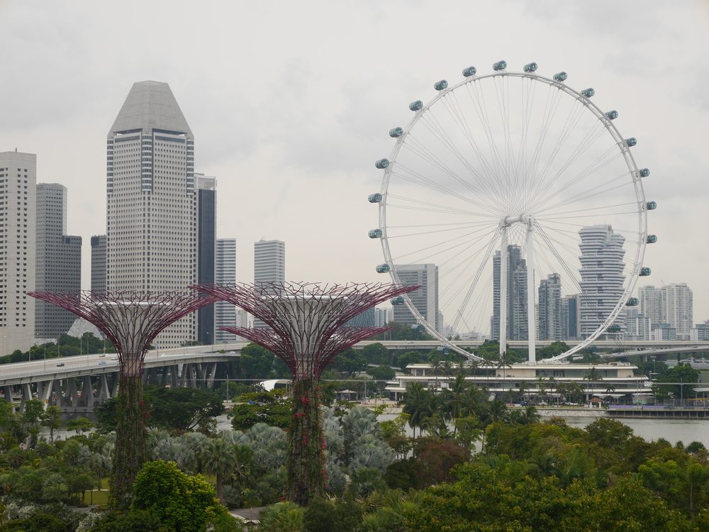 A view of the Singapore Flyer from the skyway, with a few supertrees in the foreground.