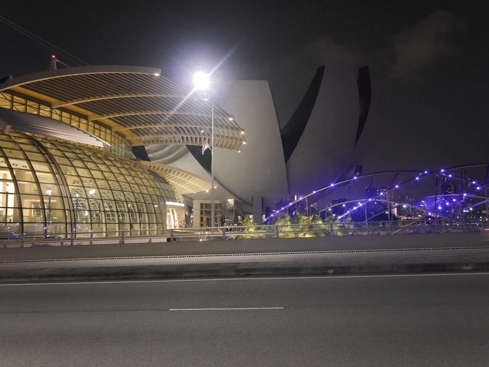 The ArtScience museum at night.