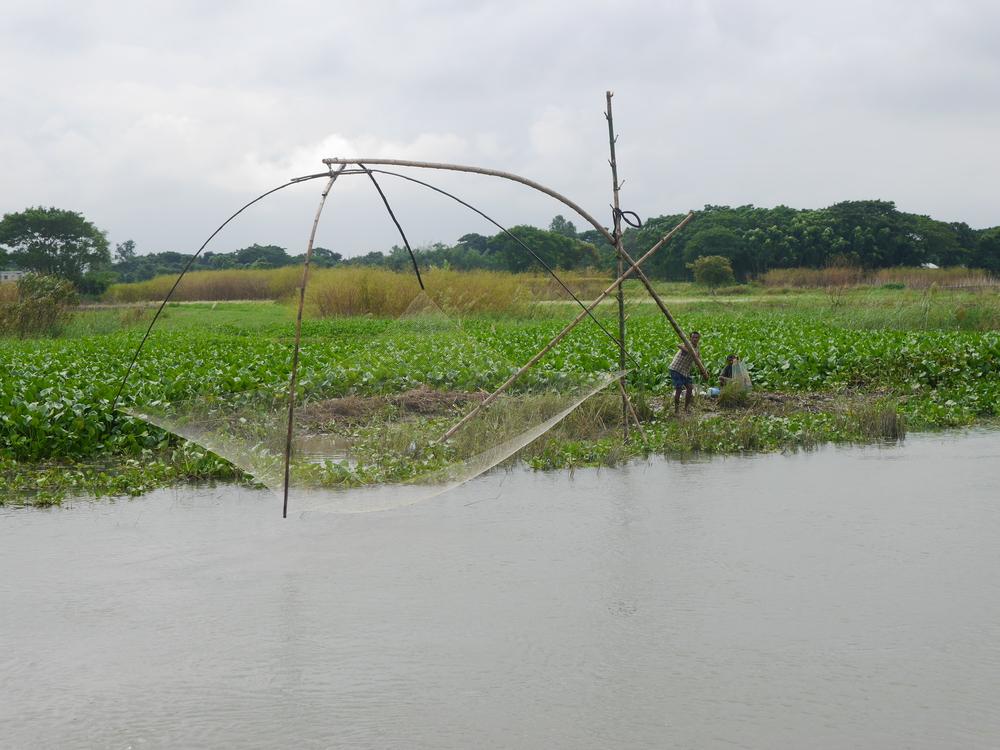 A fisherman operating a stationary net.