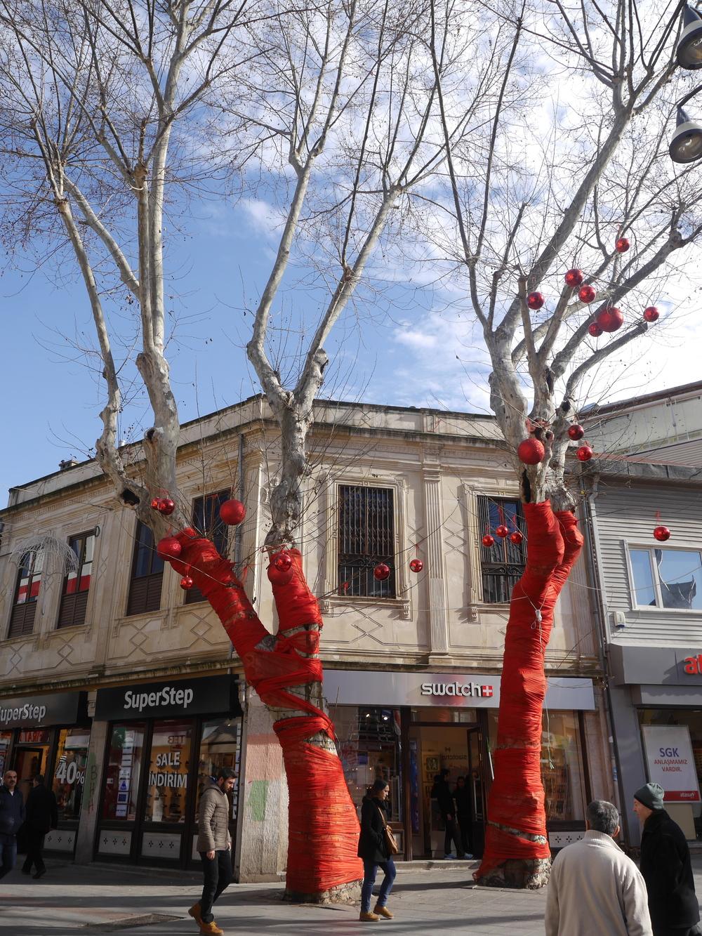 Festive trees.