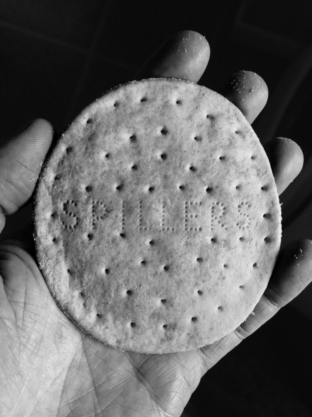 Spillers Biscuit-2.jpg