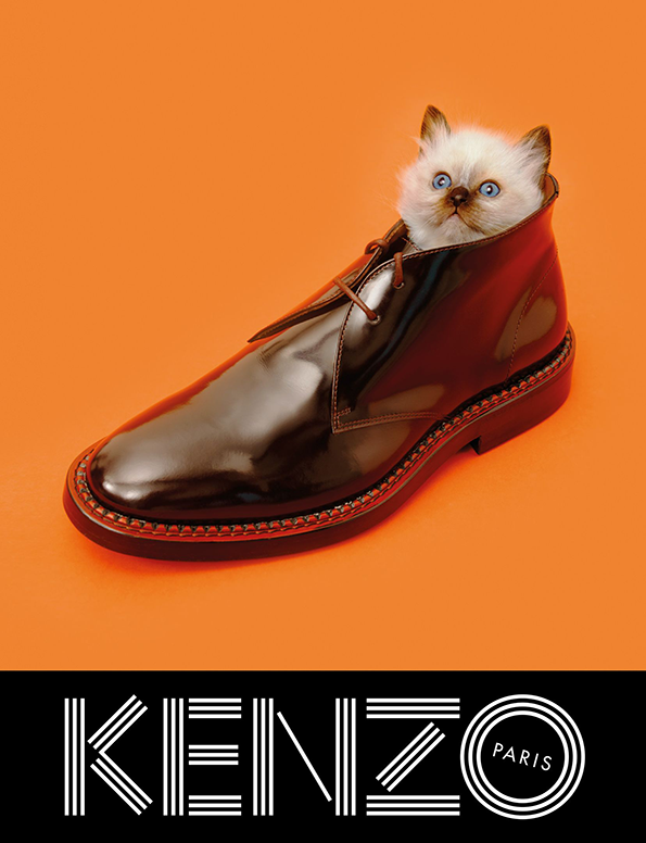 KENZO_FW13_Campaign_-_cat_shoe.png