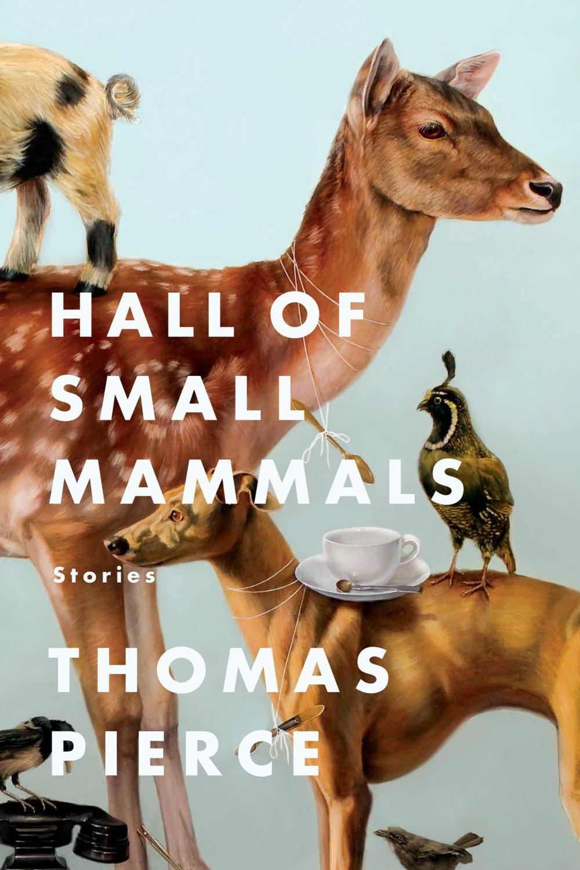 hall-of-small-mammals.jpg