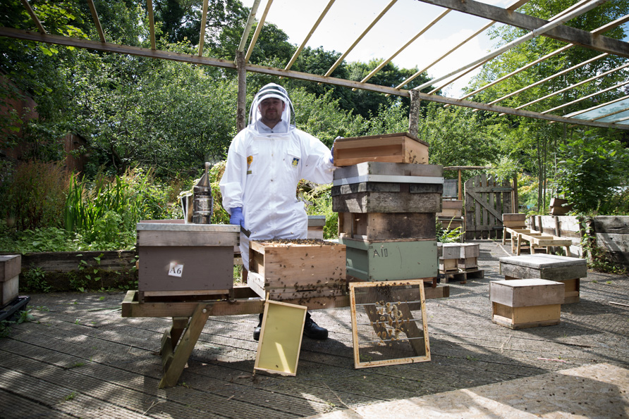 bees-34.jpg