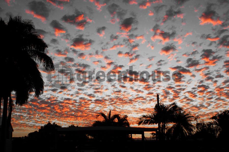 NQ Sunset2.jpg