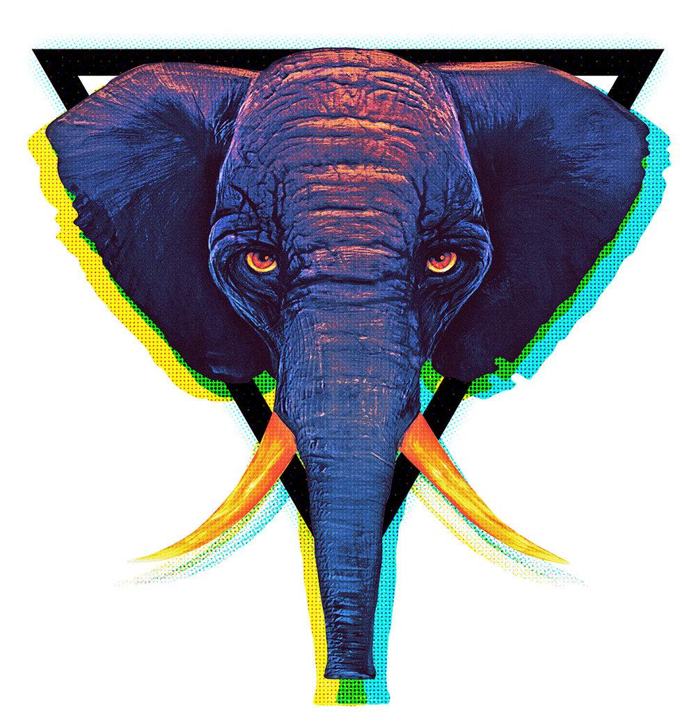 06_elephant.jpg