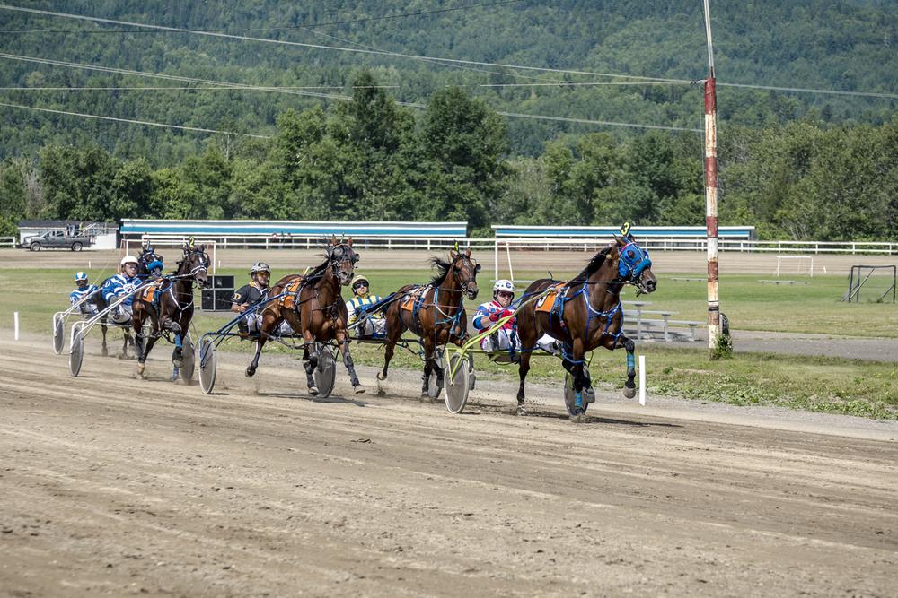 Circuit Régional des Courses de Chevaux du Québec - Hippodrome de Nouvelle - Tora Photography