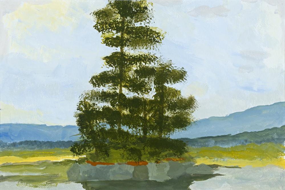 1808 Pine Island.jpg