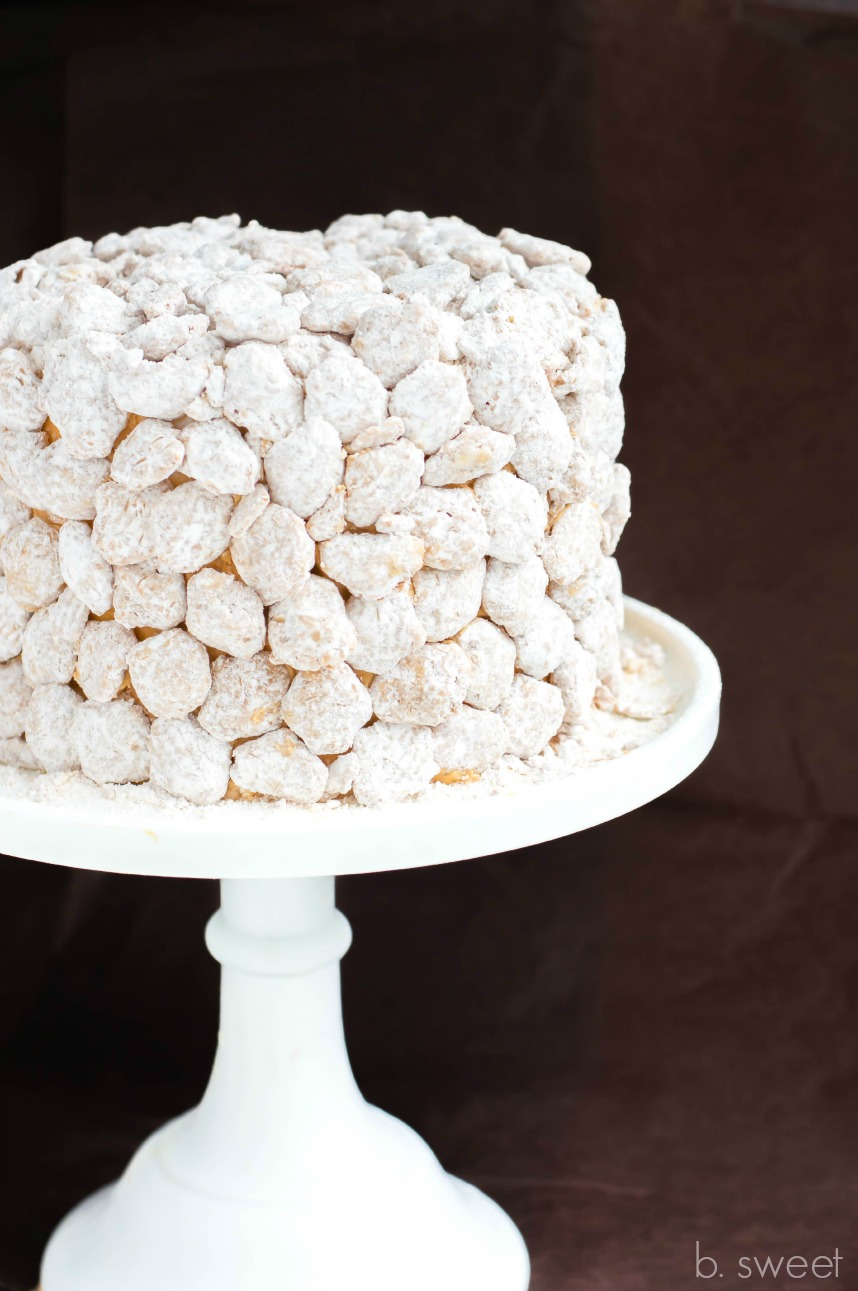 Puppy Chow Cake 2-5.jpg