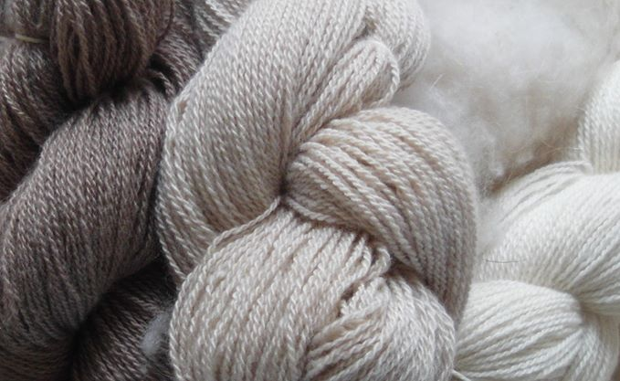 Skeins of natural cashmere yarn
