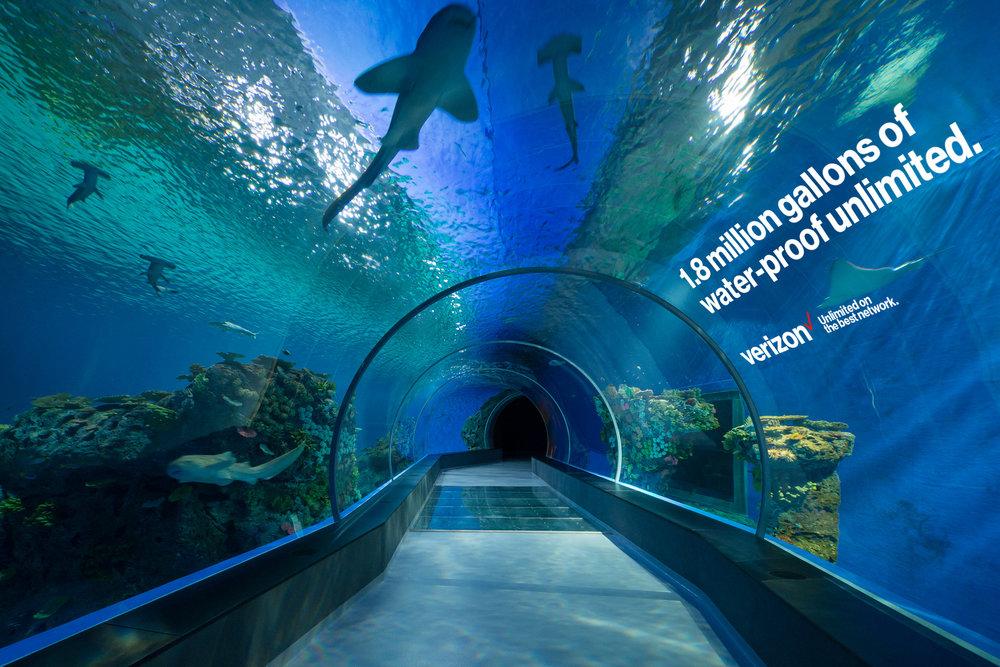 ATL_Aquarium.jpg