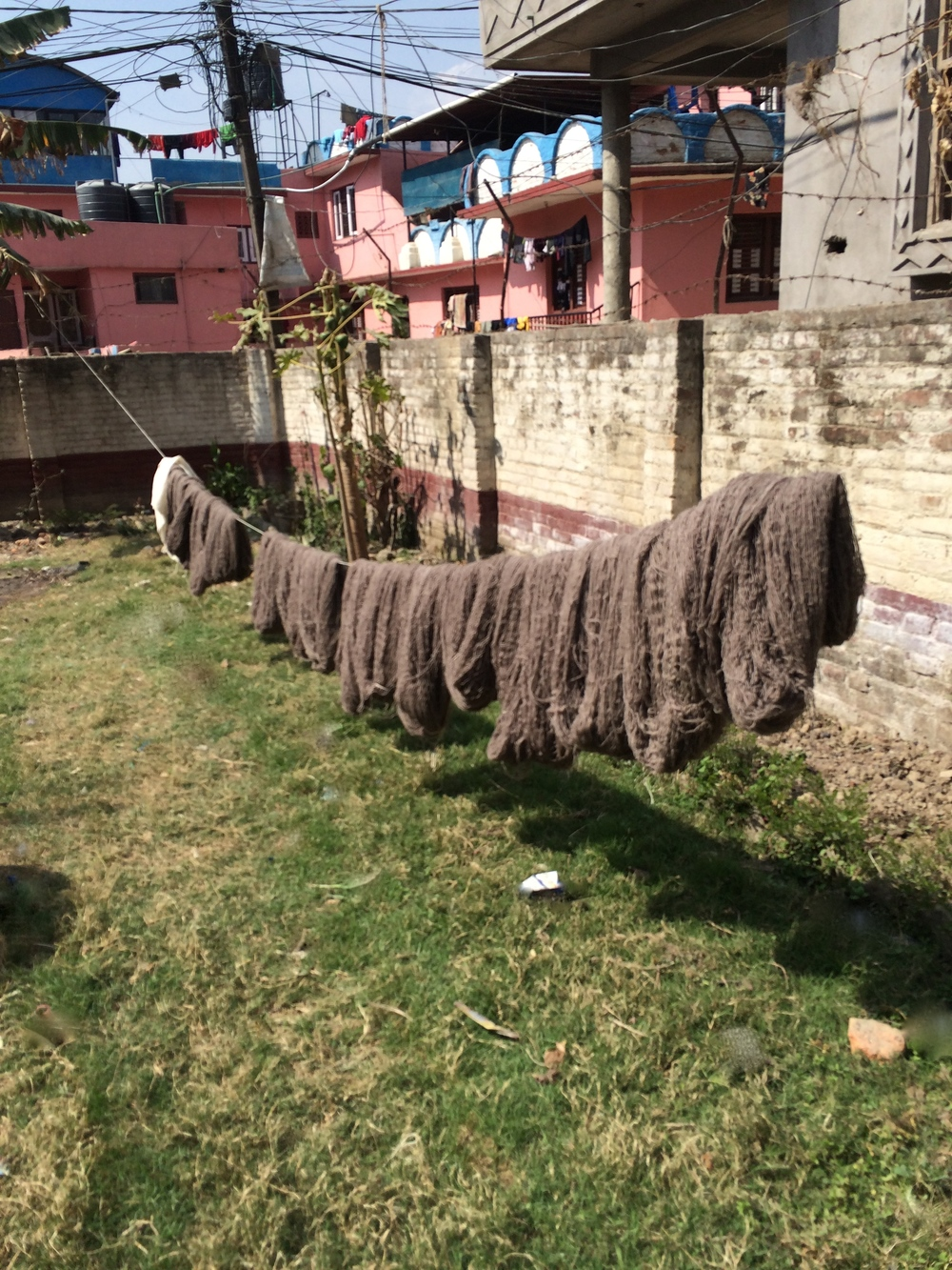 Wool yarn drying in the sun.