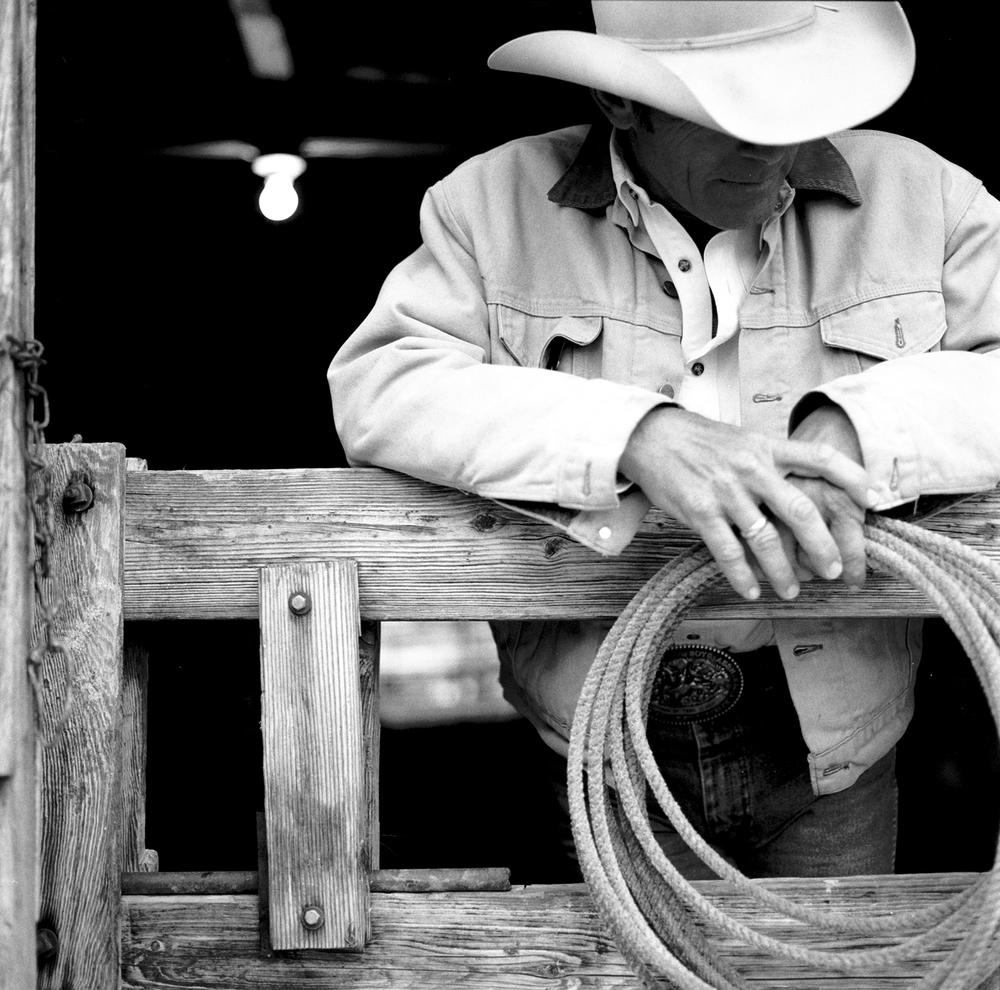 clcowboy.jpg
