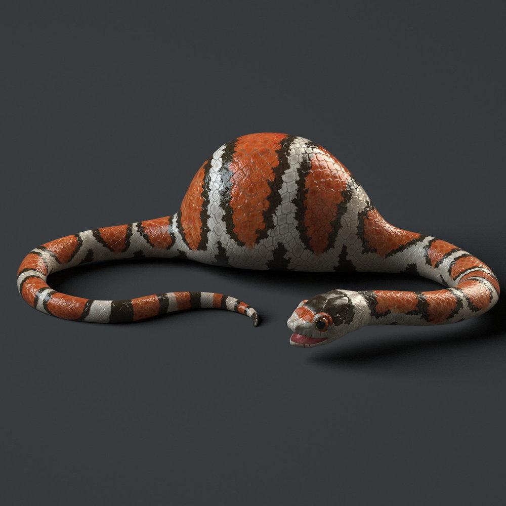daniel-garcia-snake-render.jpg