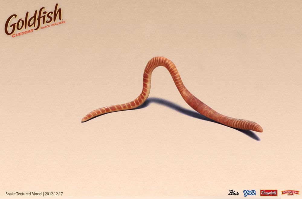 worm_Template_01.jpg
