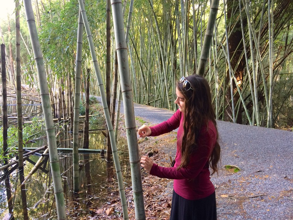 Flicking the bamboo to hear the hollow sound.