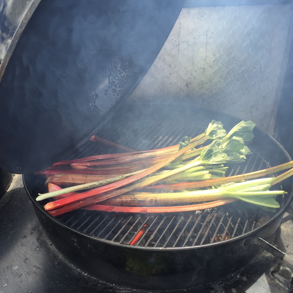 Rhubarb on the grill