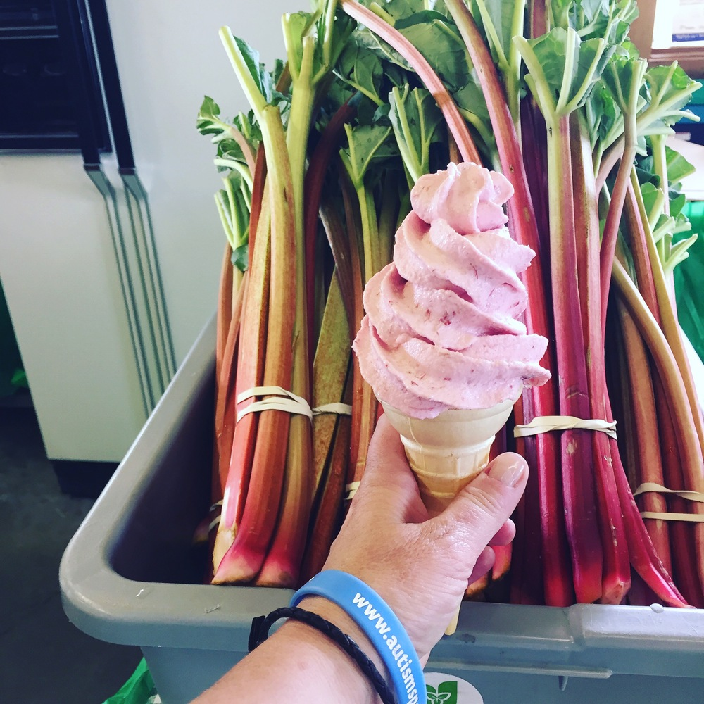 Awesome fresh from the farm rhubarb yogurt at Andrews Scenic Acres.