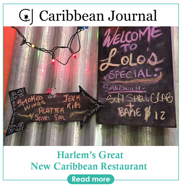 Caribbean Journal.jpg