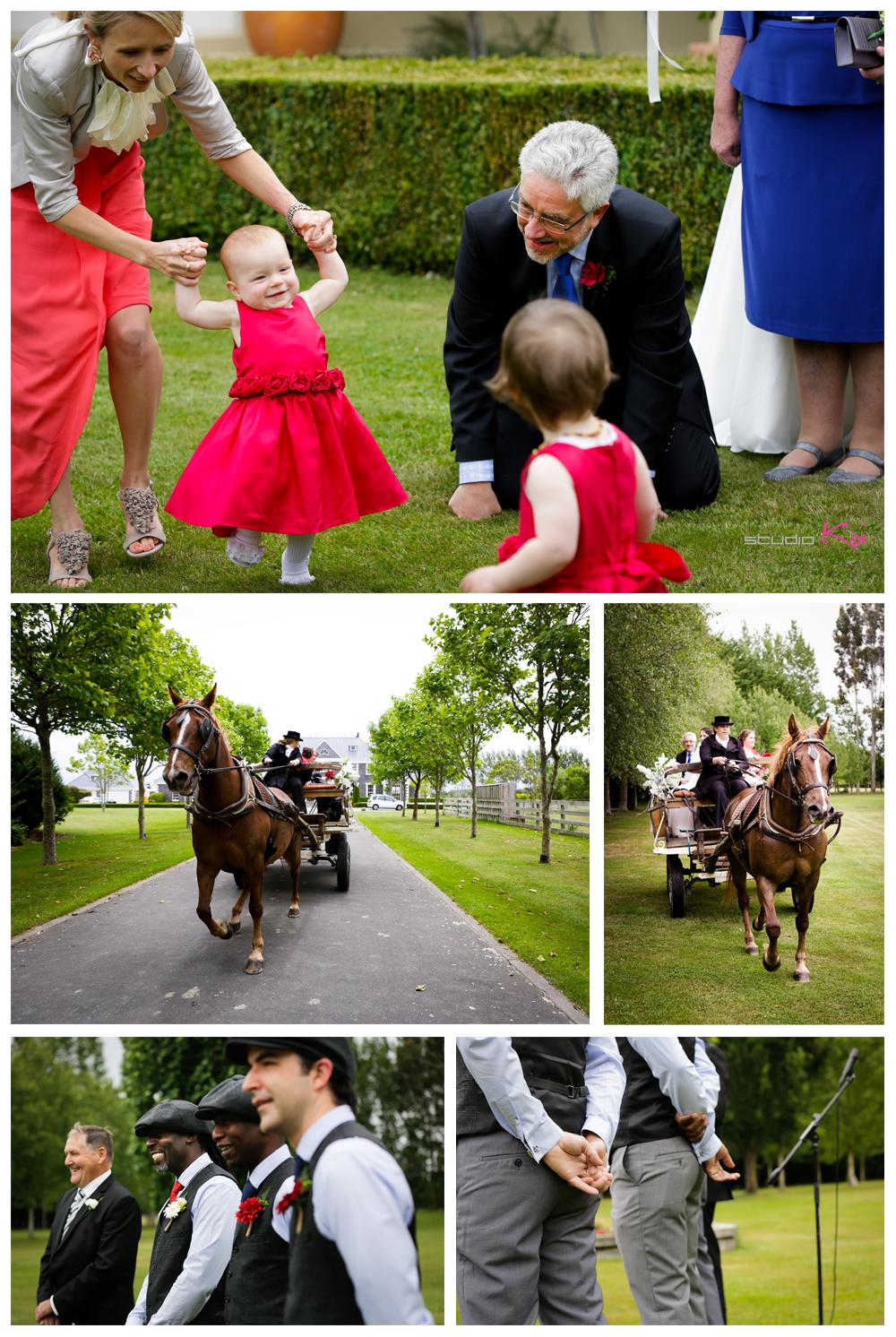 Rosemount Estate Wedding in Christchurch
