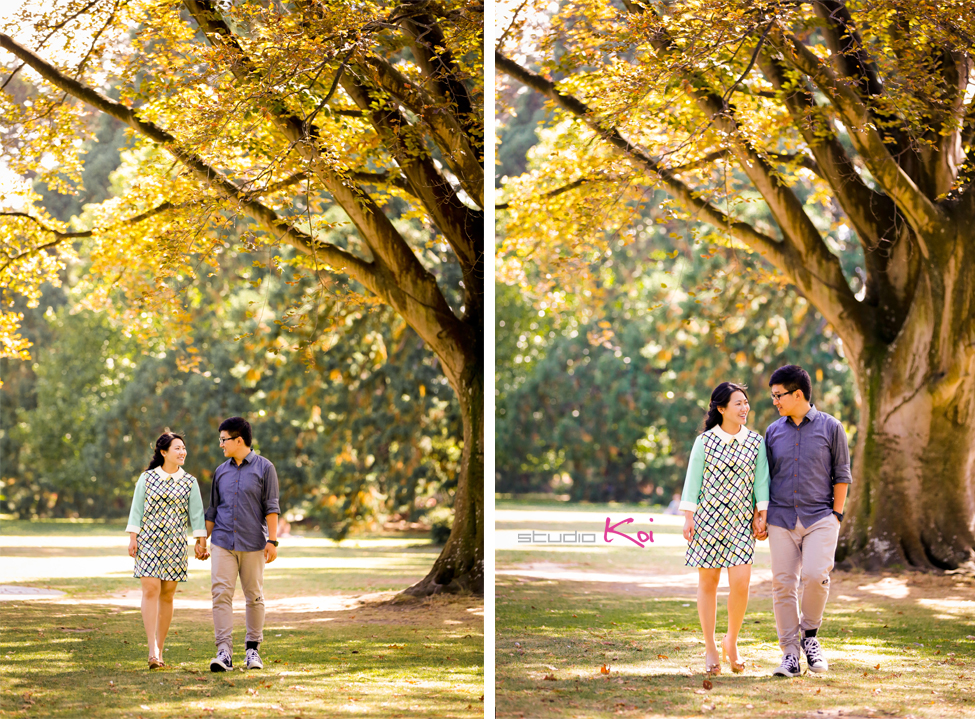 Botanic Gardens   engagement photos Christchurch wedding photographers