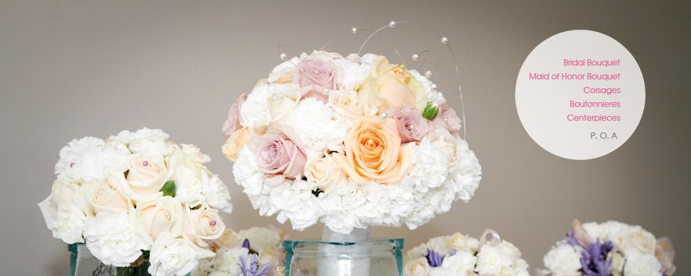 Christchurch-wedding-photographer13.jpg