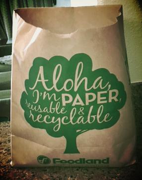 Aloha Paper Bag