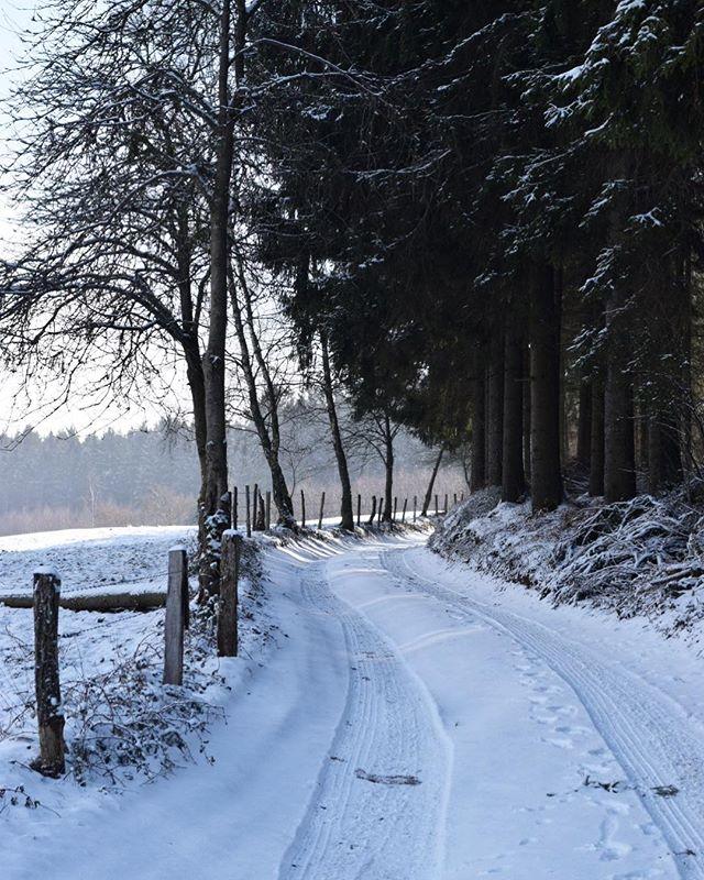 P R E T T Y  P E R F E C T  T O D A Y ❄️ #familytime #winterwonderland